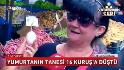 Yumurtanın tanesi 16 kuruşa düştü