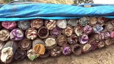 saray mutfagi - Herekol Dağı'nda 'huzurlu' bal üretimi - SİİRT