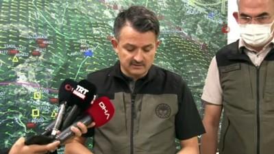 Bakan Pakdemirli: 'Yangın yaklaşık 300 hektarlık bir alanda etkili oluyor'