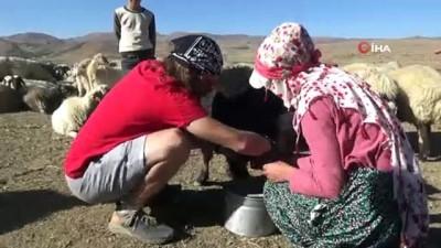 İtalyan turist Hakkari'de koyun sağıp, inşaatta çalışıyor