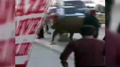 Bursa caddeleri hayvanat bahçesine döndü