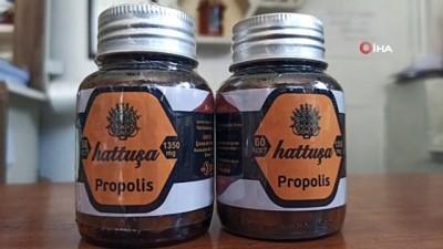 propolis -  Korona virüs propolise ilgiyi artırdı