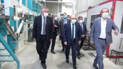 fabrika -  Vali Dağlı, Bafra'da incelemelerde bulundu