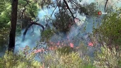 Manavgat'ta orman yangını kontrol altına alındı