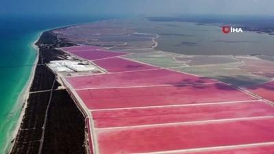 Meksika'nın Pembe Gölü'nü Türk çift görüntüledi