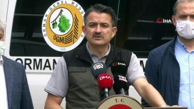 Bakan Pakdemirli: 'Hatay yangını kontrol altına alındı'