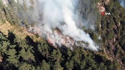 orman yangini -  Kastamonu'da 5 günde söndürülen orman yangınları tekrar başladı
