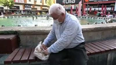Emekli maaşıyla Antalya sokaklarındaki 90 kediye bakıyor