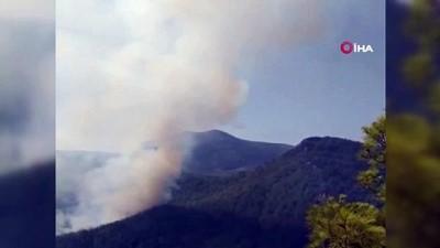 kayali -  Gündoğmuş'taki yangın rüzgarın etkisiyle yayılıyor