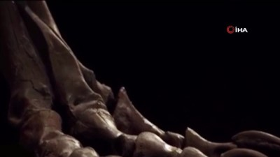 dinozor -  - ABD'de 67 milyon yıllık dinozor iskeleti 31.85 milyon dolara alıcı buldu