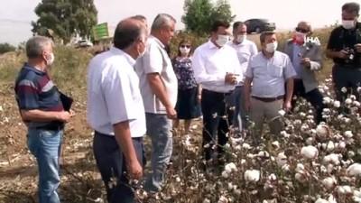 Efeler Ziraat Odası Başkanı Kendirlioğlu, 'Çiftçinin bayramı hasattır'