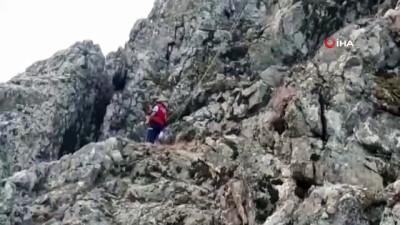 kayali -  Kayalıklara kaçan keçiyi itfaiye ekipleri indirdi