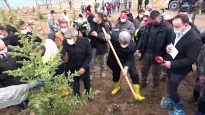 """orman yangini -  Van Valisi Bilmez: """"Geçen sene dikilen ağaçların yüzde 80'i tuttu"""""""