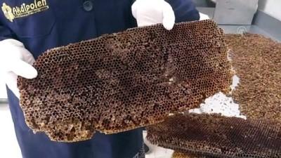 Bal peteklerinden üretilen 'arı ekmeği' talep görüyor - AFYONKARAHİSAR