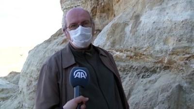 EDİRNE - Mamut fosili bulundu