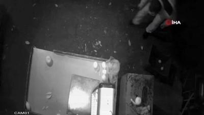 harekete gec -  Servet çalan hırsızlar önce kameralara sonra polise yakalandı