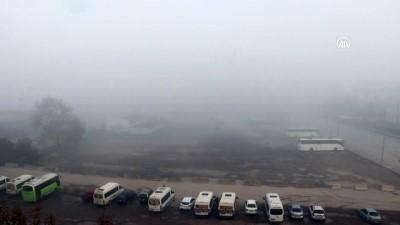 KOCAELİ - Yoğun sis ulaşımı olumsuz etkiliyor