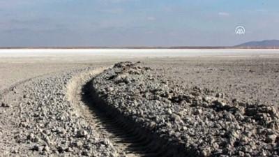 KIRŞEHİR - Yağış yetersizliğinden suyu çekilen Seyfe Gölü, göç yolundaki kuşlara mola verdirmedi