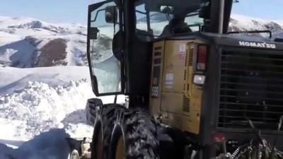 BAYBURT - Karla mücadele çalışmaları sürüyor