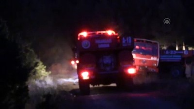 orman yangini - KASTAMONU - Araç'ta orman yangını (2)