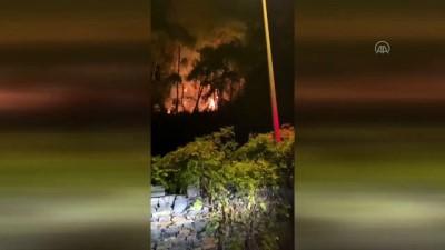 orman yangini - Ula'da çıkan orman yangını söndürüldü - MUĞLA