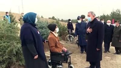 ANKARA - Akar ve komutanlar gazilerle birlikte fidan dikti