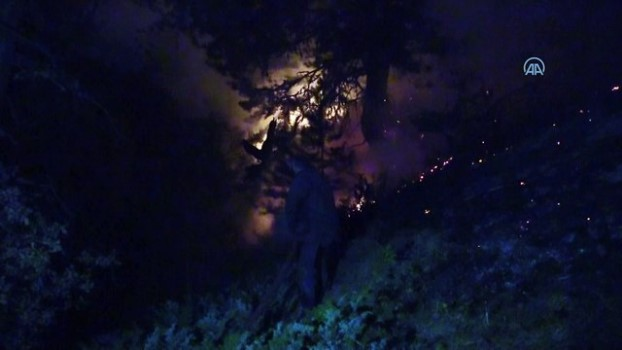 orman yangini - KASTAMONU - Orman yangını kontrol altına alındı