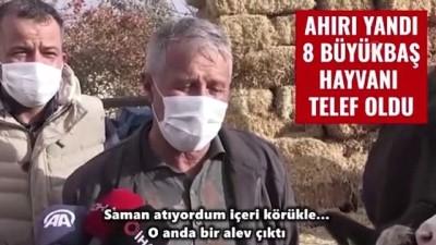 KAYSERİ - Hayvanları yangında telef olan besiciye devletin şefkat eli uzandı (2)