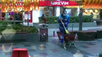 yagmurdan sonra -  Arnavutköy'de yürek ısıtan görüntü...Temizlik işçisi fırçası ile sokak köpeğinin üzerini temizledi
