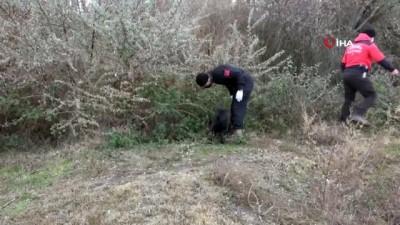 - Çankırı'da 22 gündür aranan kadından acı haber