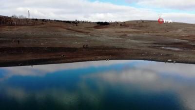 Gölette ortaya çıkan ağaçlar, yaşanan kuraklığı ortaya koydu