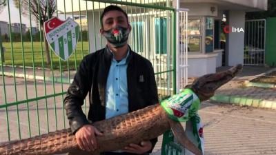 Bursaspor taraftarı tesise timsah getirdi