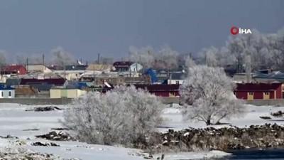 Kars eksi 17'yi gördü, kırağı tutan ağaçlar görsel şölen sundu