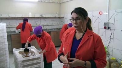 - Kadın kooperatifi kivi ve hurmadan pestil üretimine başladı