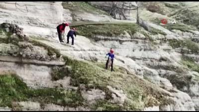 - Tunceli'de kayalıklarda mahsur kalan keçileri AFAD ekipleri kurtardı