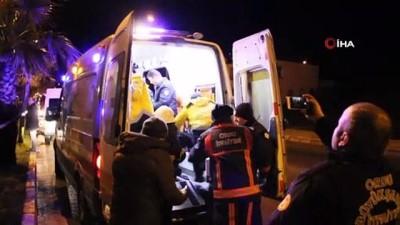 palmiye agaci -  Ordu'da trafik kazası: 2 ölü, 2 yaralı