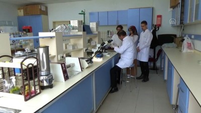 gribal enfeksiyon - Prof. Dr. Karaman: 'Beslenme ve temizlik kurallarına uyulduğu takdirde koronavirüs korkutucu değil' -TOKAT
