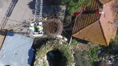 leylek koyu -  Yaren Leylek'in yuvasında bahar temizliği