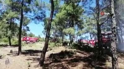 GES Bekçisinin yaktığı ateş yangına sebep oldu