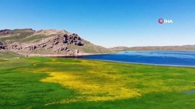 yayla turizmi -  Yeşilin, mavinin ve sarının buluştuğu Keşiş Gölü'nün eşsiz güzelliği