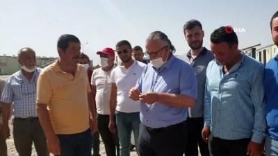 Aksaray'da yılın ilk mahsulü Arpa ATB'den satıldı