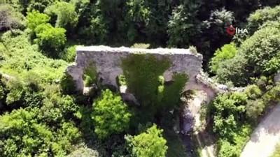 800 yıllık su kemerleri Kocaeli ormanlarında ayakta kalmak için direniyor