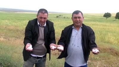 akon - Dolu, ekili alanlara zarar verdi - AKSARAY