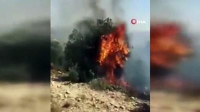 - Yahudi yerleşimciler Filistinlilerin arazilerini ateşe verdi