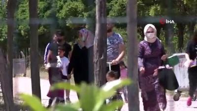 İzmirliler, soluğu piknik alanlarında aldı...Karantina süreci en çok otizmli bireyler ve ailelerini etkiledi