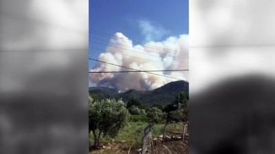 Gece kontrol altına alınan orman yangını yeniden başladı - MANİSA