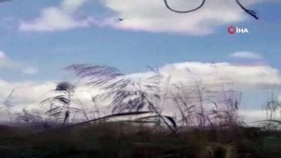 hint keneviri -  Jandarma ekiplerinden drone destekli uyuşturucu operasyonu