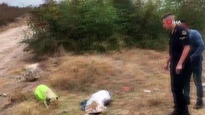 Vahşetin böylesi...Çuvala koyularak ölüme terkedilen köpeği jandarma kurtardı