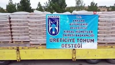 - Büyükşehir çiftçilerin yanında: 25 ilçede tohum desteği