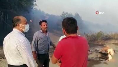 akon -  Söke yangınında onlarca arı kovanı kül oldu